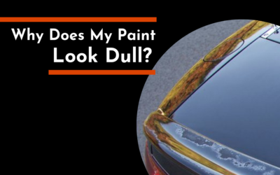 Why Does My Paint Look Dull?